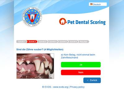 Startseite Pet Dental Scoring.jpg